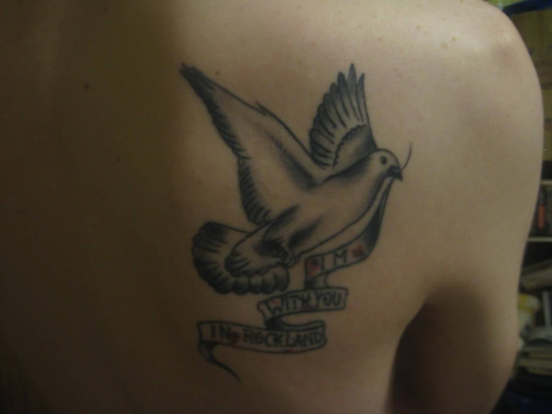 Pigeon With Banner Tattoo