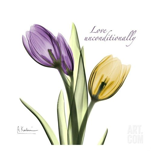 Purple And Yellow Tulips Tattoo Design