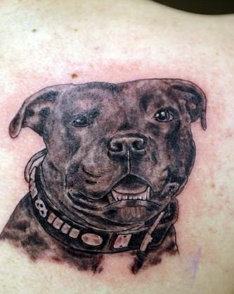 Real Looking Black Dog Tattoo