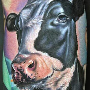 Real Looking Cow Tattoo