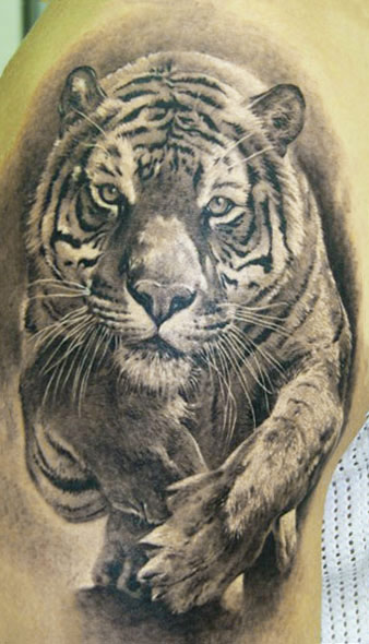 Realistic Animal Tiger Tattoo On Biceps
