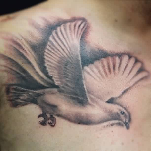 Realistic Flying Pigeon Tattoo