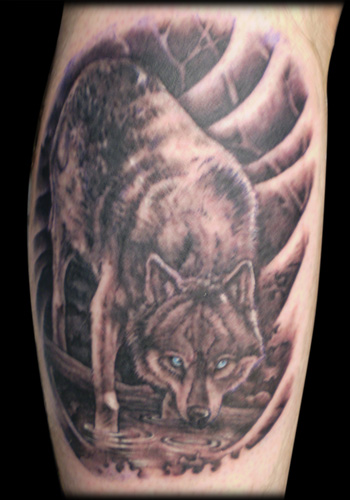 Realistic Grey Wild Wolf Tattoo