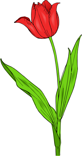 Red Tulip Tattoo Design (2)