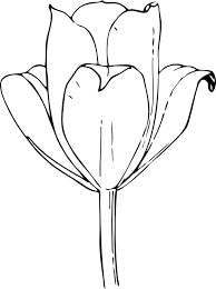 Sample For Tulip Tattoo Design