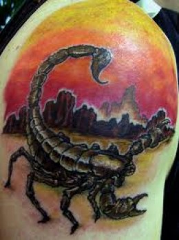 Scorpion And Colored City Tattoos On Shoulder