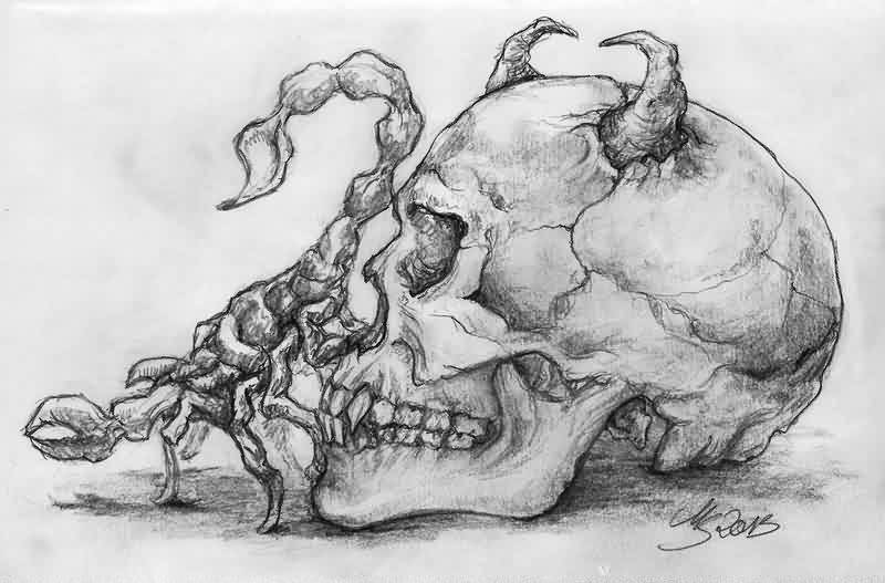 Scorpion And Devil Skull Tattoo Sketch