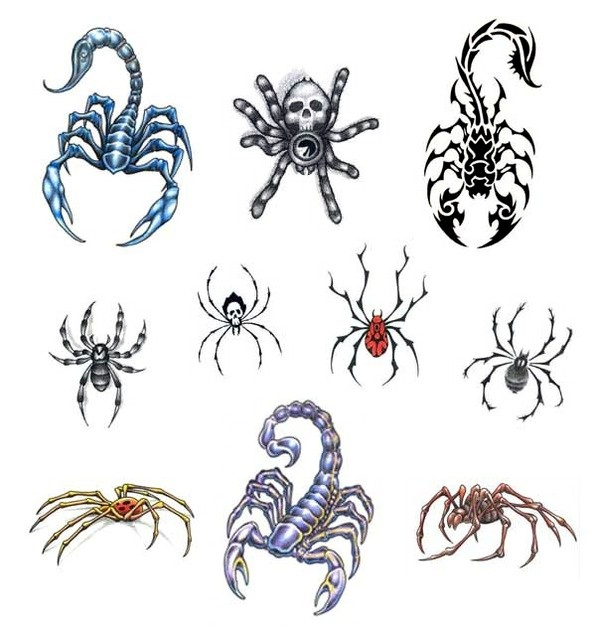 Scorpion And Spider Tattoos Set (2)