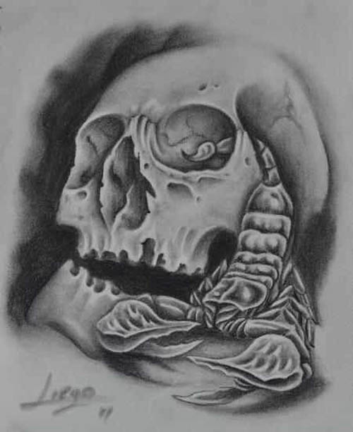 Scorpion From Skull Eye Tattoo Sketch