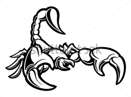 Scorpion Tattoo Sample (2)