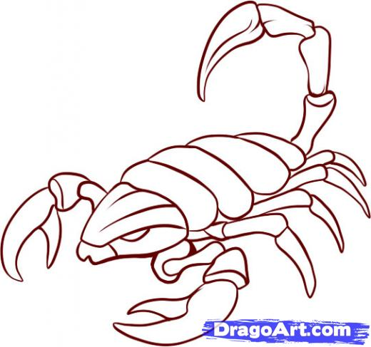 Scorpion Tattoo Sample (3)
