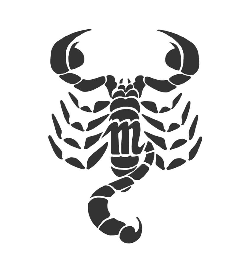 Scorpion Tattoo Thing