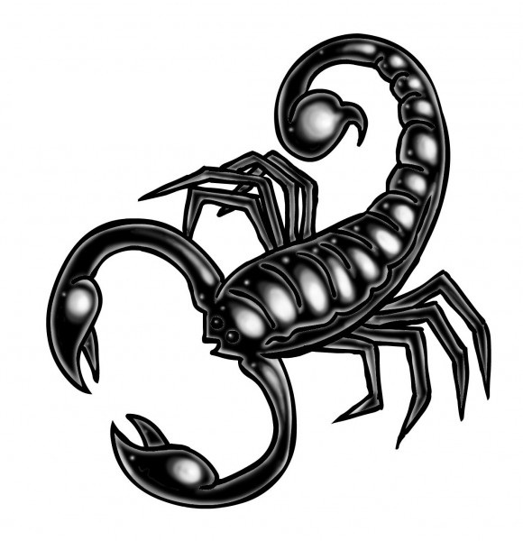 Scorpion Tattoo Version