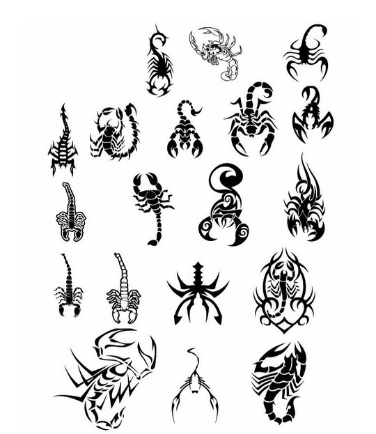 Scorpion Tattoos Collection