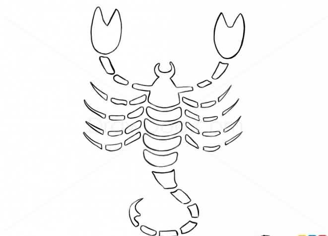 Scorpion Uncolored Tattoo Sample