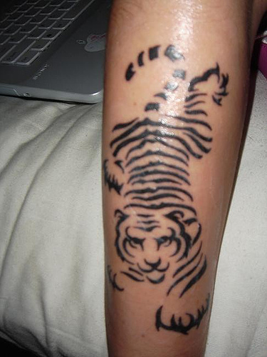 Shining Tiger Animal Tattoo On Arm