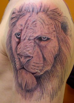 Simple Lion Face Tattoo On Shoulder