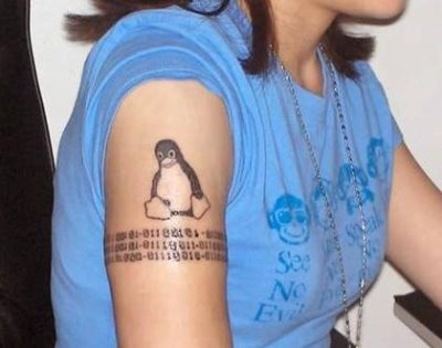Sitting Penguin Tattoo On Biceps