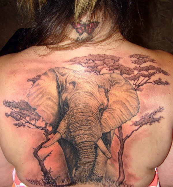 jungle elephant tattoo