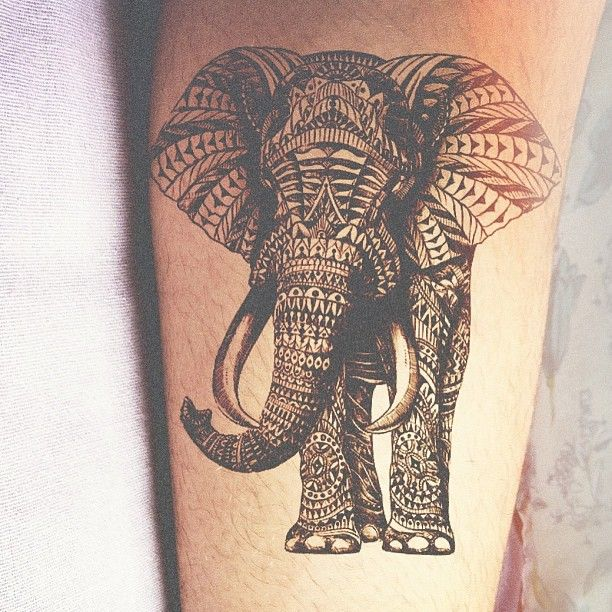 tribal elephant tattoo