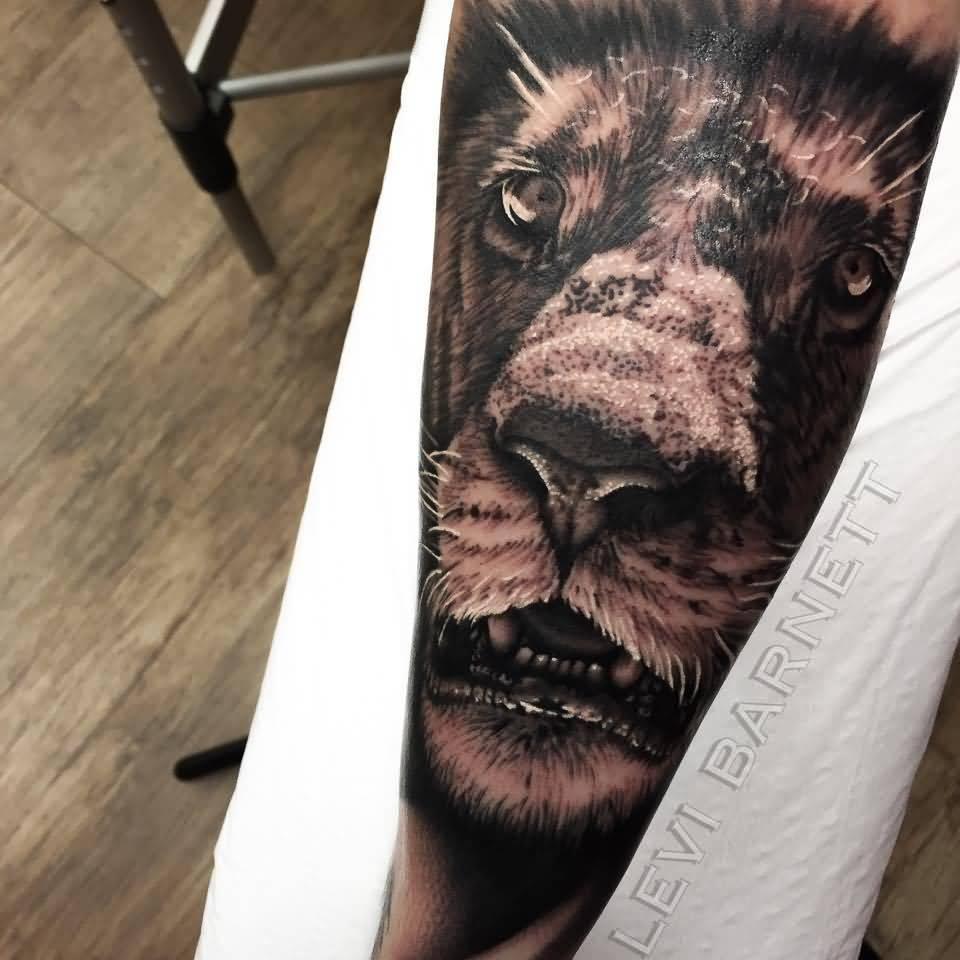 3D Realistic Lion Face Tattoo Design Made By Levi Barnett