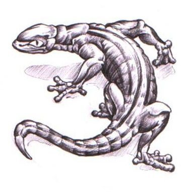 Angry Crawl Backward Reptile Lizard Tattoo