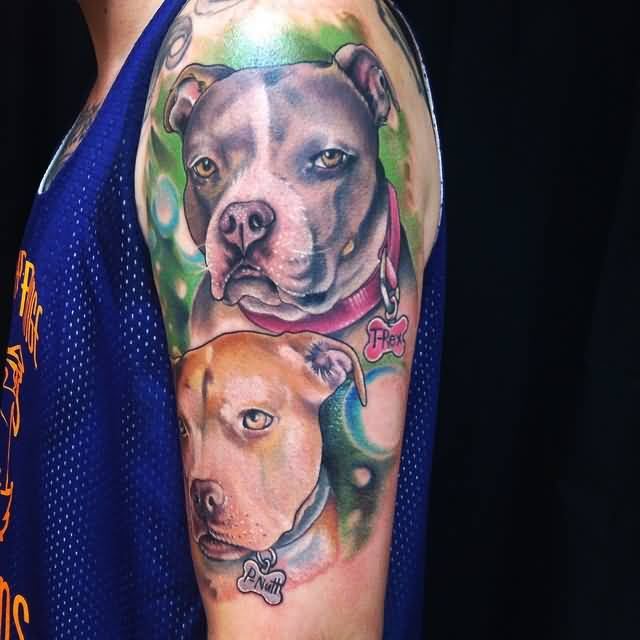 Best Friends Pitbull Dog Faces Tattoo Design On Half Sleeve