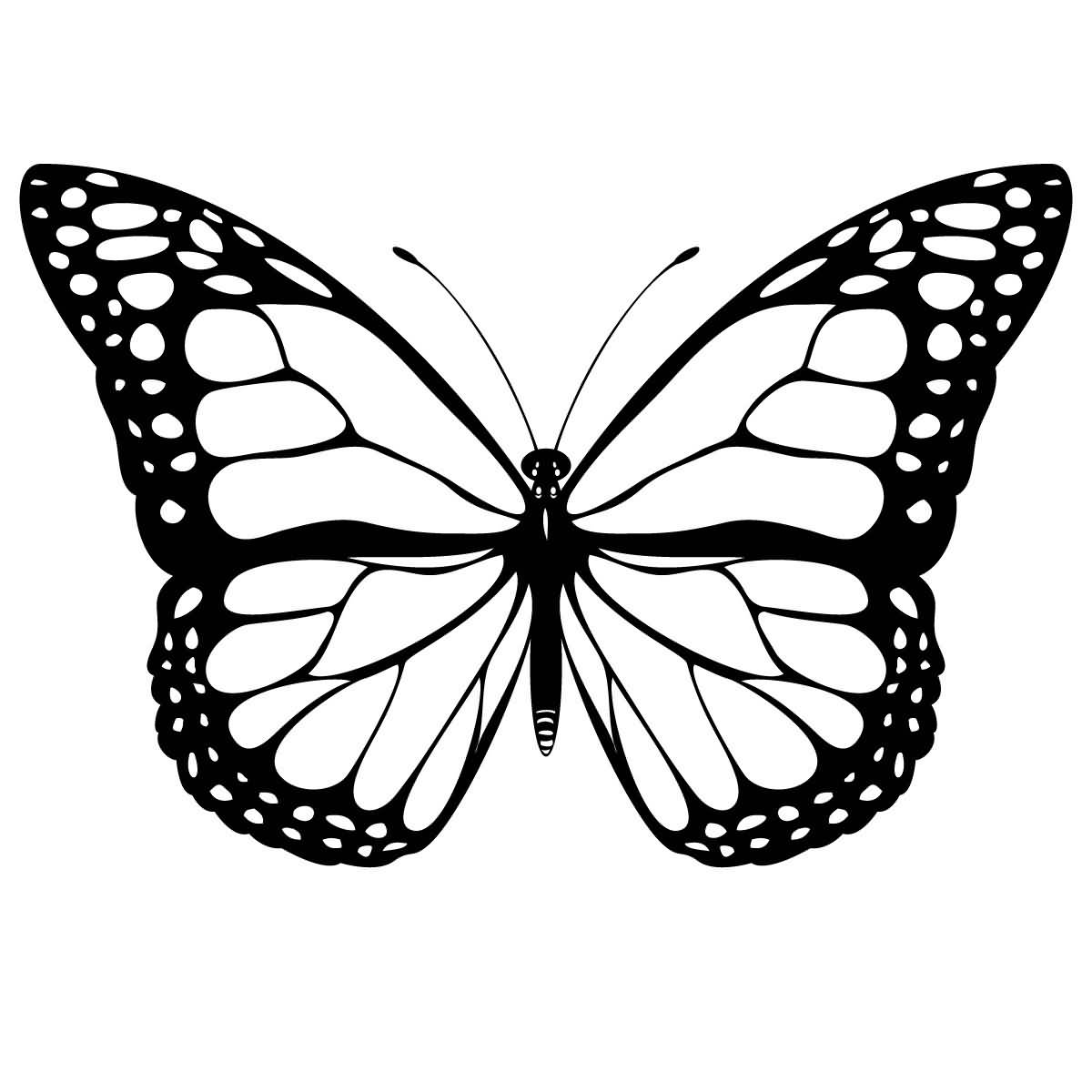 Classy Cool Monarch Butterfly Tattoo Stencil