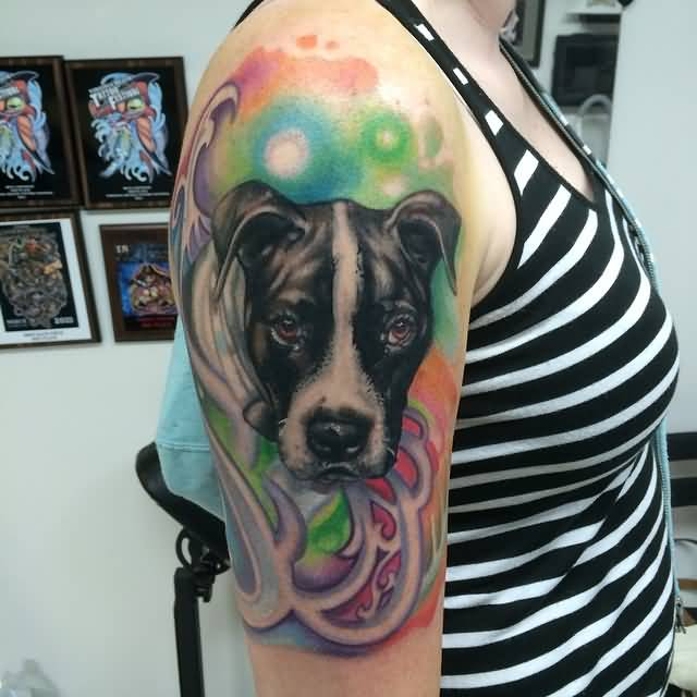 Colorful And Nice Pitbull Dog Face Tattoo Design Idea