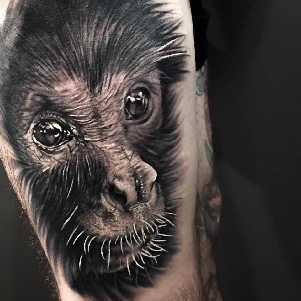 Crazy Cool Monkey Face Tattoo Design By Levi Barnett