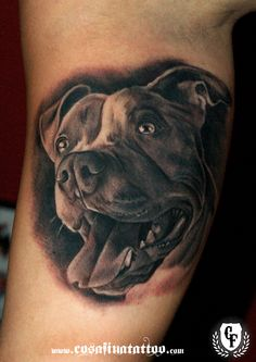Dangerous And Nice Pitbull Dog Head Tattoo Design