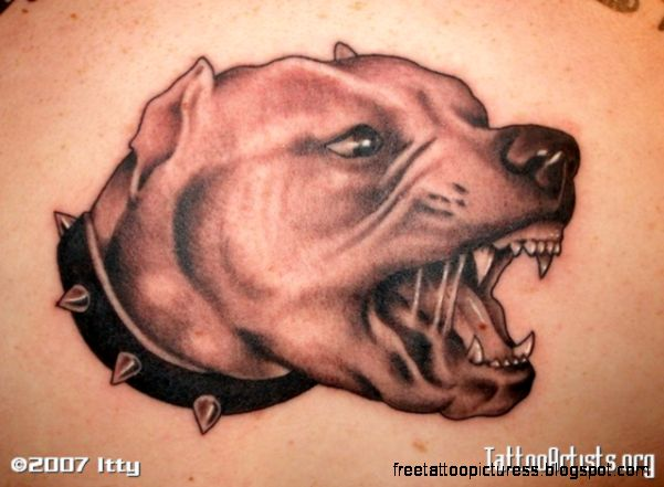 Dangerous And Scary Pitbull Dog Face Tattoo Design Idea