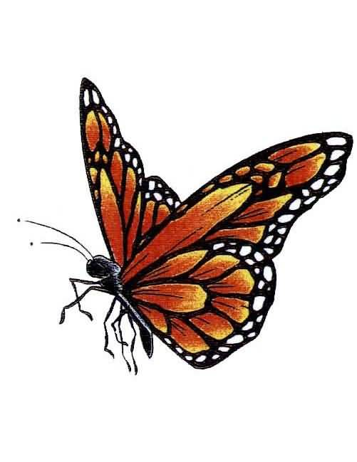Fantastic And Nice One Flying Monarch Butterfly Tattoo Design On Paper Stencil