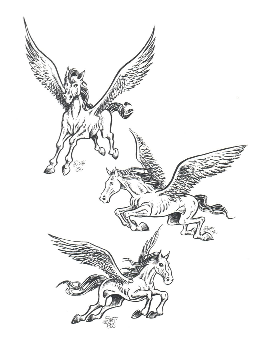 Fantastic And Nice Stencil Of Pegasus Tattoo