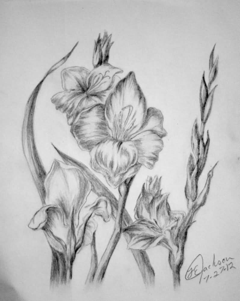 Grey Ink Nice Gladiolus Flower Tattoo Design