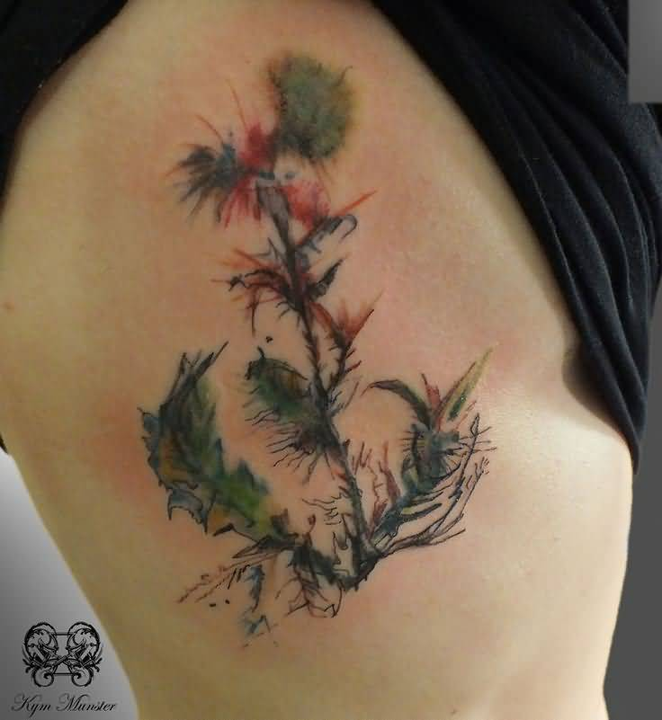 Hot Girl Rib Side Nice Scottish Watercolor Thistle Tattoo