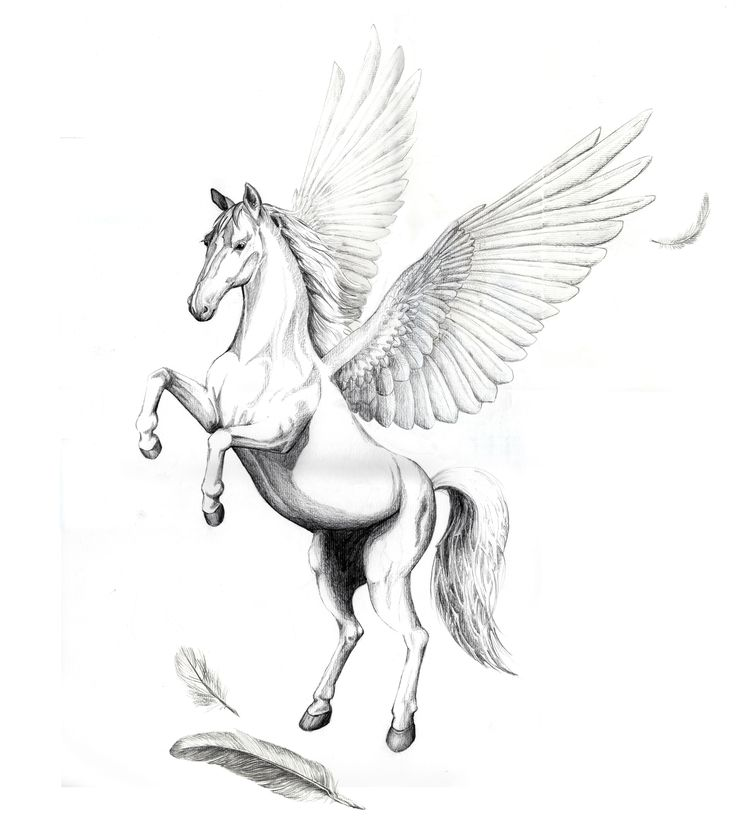 Jumping Pegasus Tattoo Design With Nice Feather Stencil