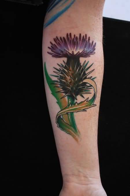 Lower Arm Cover Up With Classy Cool Scottish Thistle Tattoo