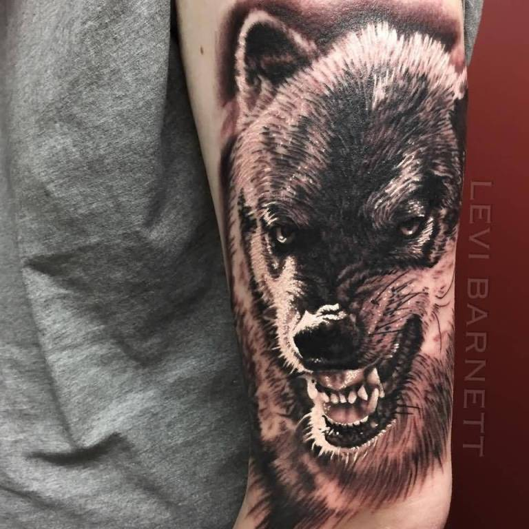 Marvelous Dangerous Teeth Wolf Face Tattoo Design By Levi Barnett