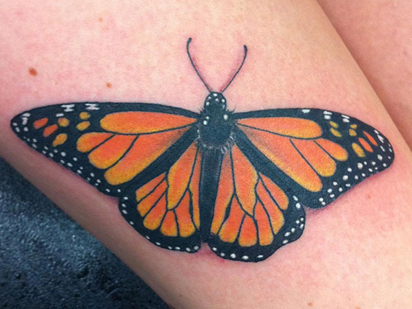 Marvelous Monarch Butterfly Tattoo Design Idea For Leg