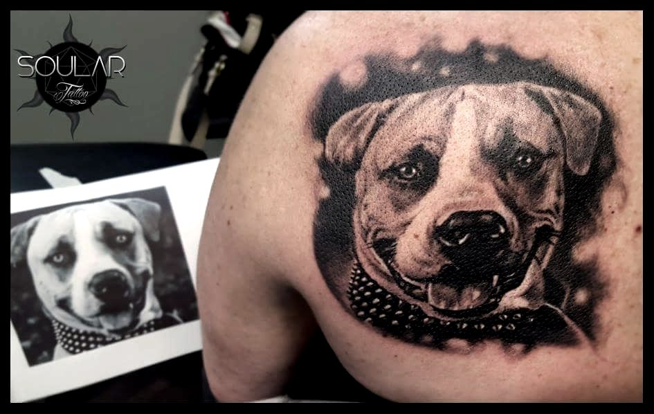 Mind Blowing And Awesome Pitbull Face Tattoo Design