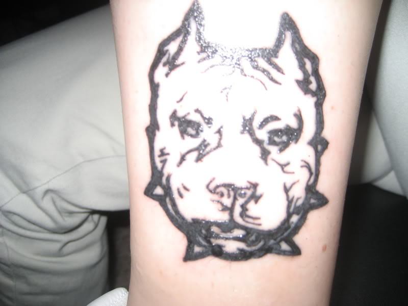 Nice Ear Crop Angry Pitbull Dog Face Tattoo By Black Ink