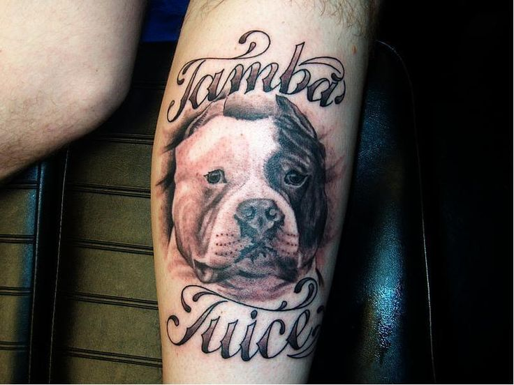 Nice Name With Pitbull Dog Face Tattoo Design Idea