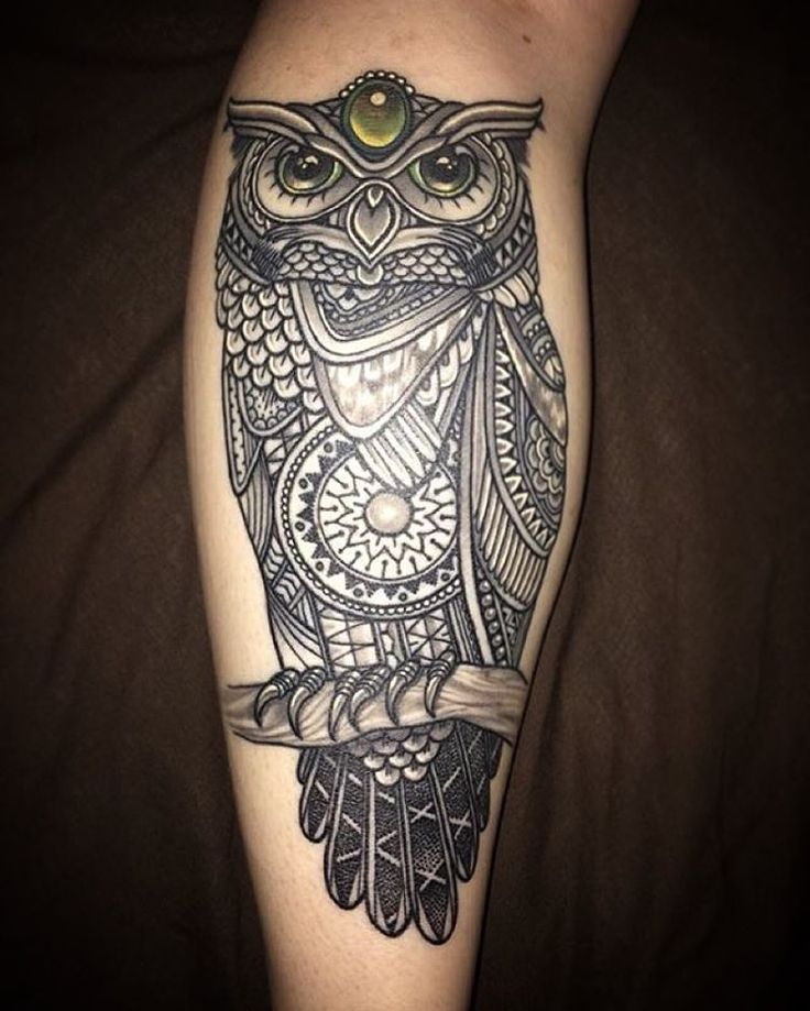 Nice Old Mosaic Owl With Tree Tattoo