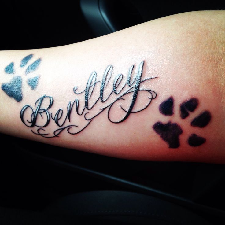 Nice Paw Amazing Bentley Text Tattoo