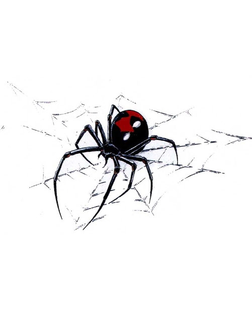 Outstanding Black Widow Spider On Web Tattoo Sketch
