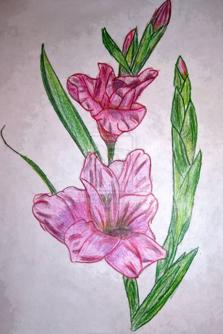 Pink Color Beautiful Gladiolus Flower Tattoo