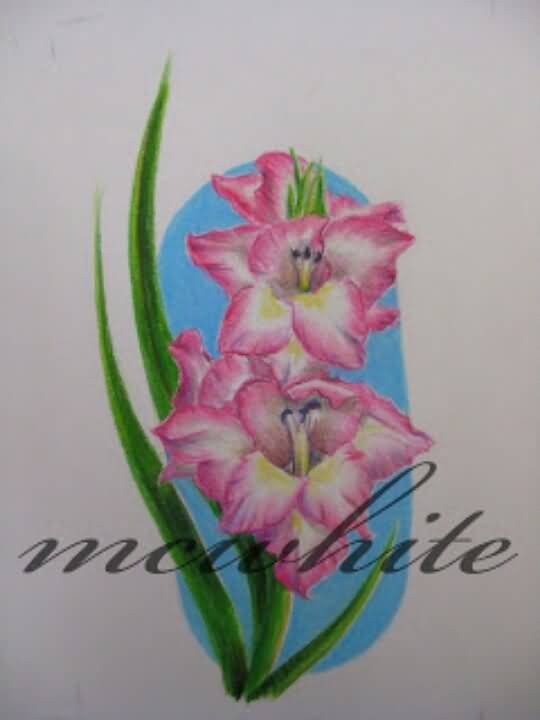 Pink Nice One Gladiolus Flower Stencil Tattoo Design