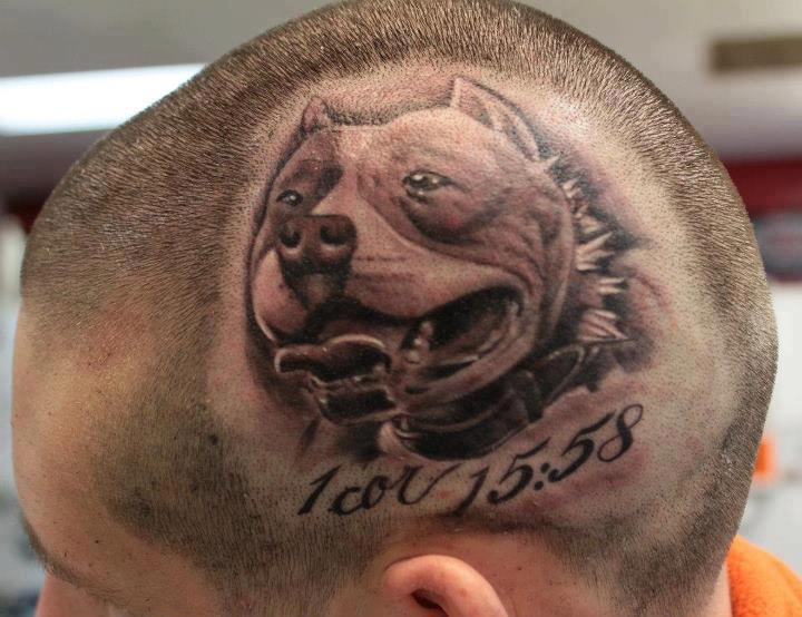 Realistic 3d Awesome And Nice Pitbull Dog Face With Date Tattoo On Side Head