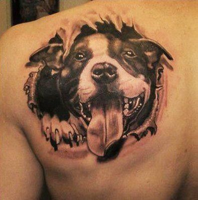 Ripped Skin Ultimate Pitbull Face Open Mouth Tongue Tattoo